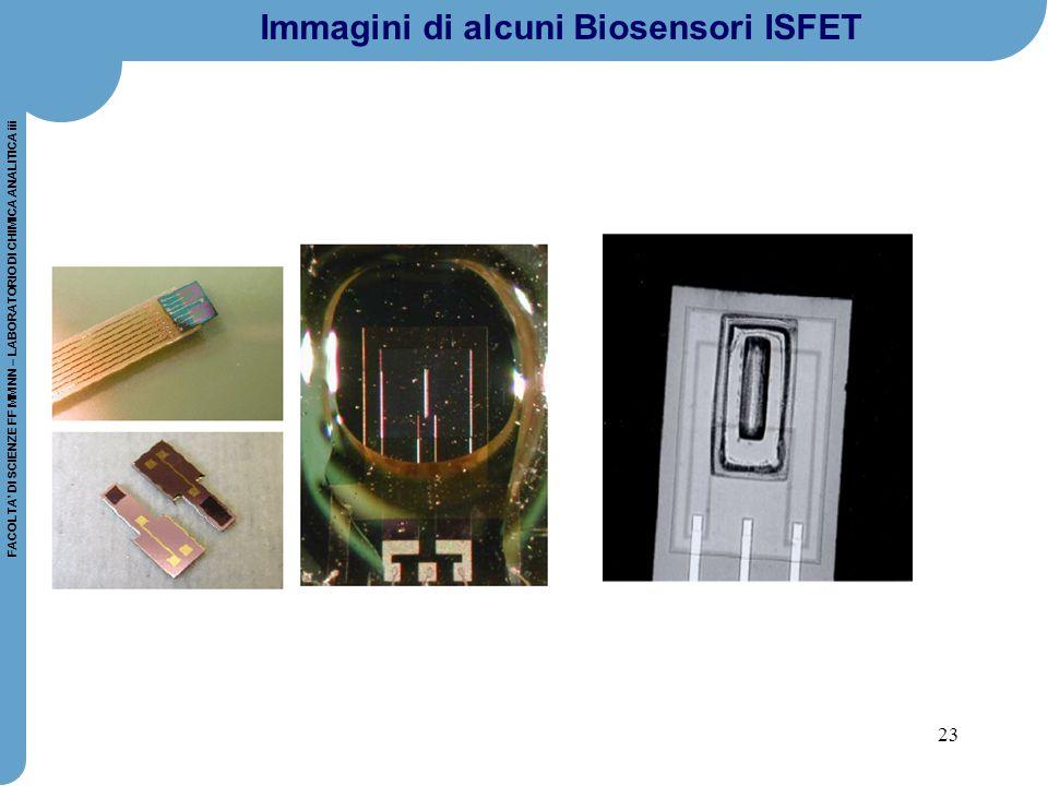 Immagini di alcuni Biosensori ISFET