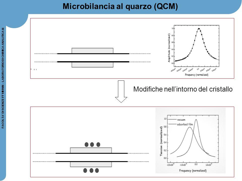 Microbilancia al quarzo (QCM)
