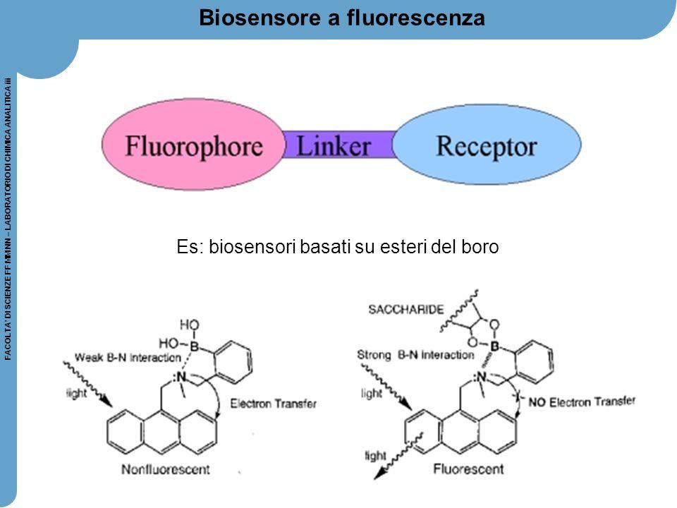 Biosensore a fluorescenza