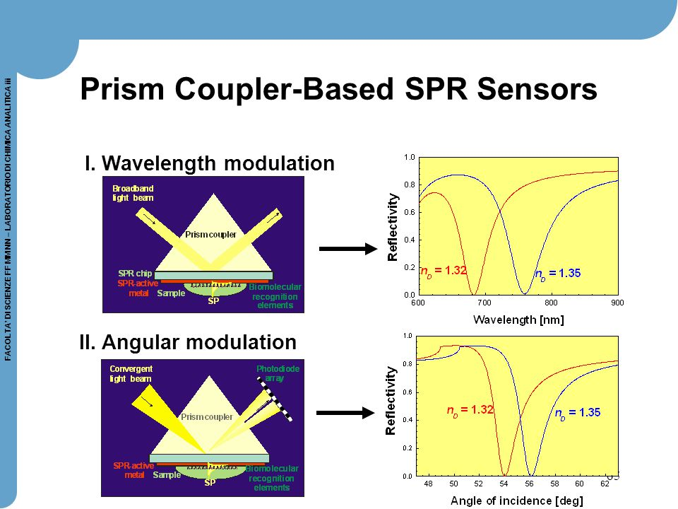 Prism Coupler-Based SPR Sensors