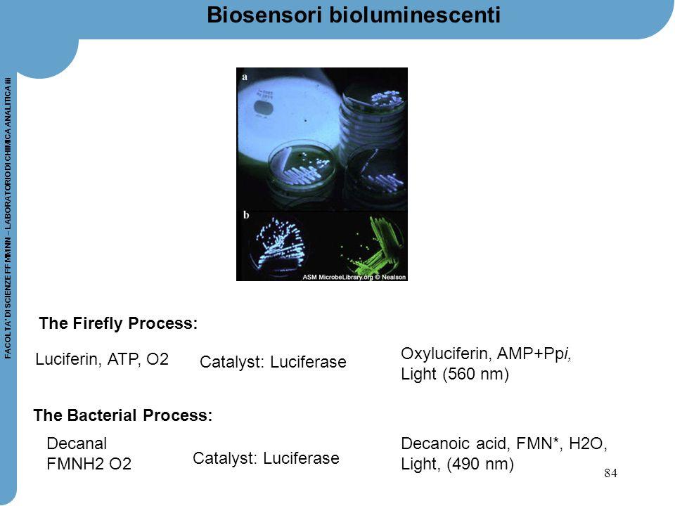 Biosensori bioluminescenti