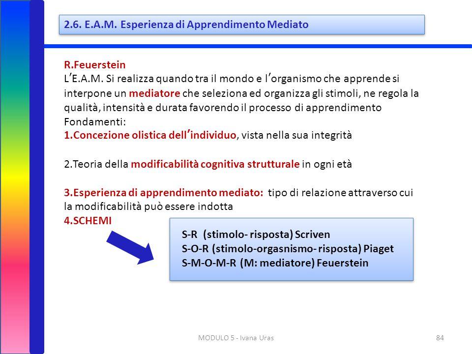 2.6. E.A.M. Esperienza di Apprendimento Mediato