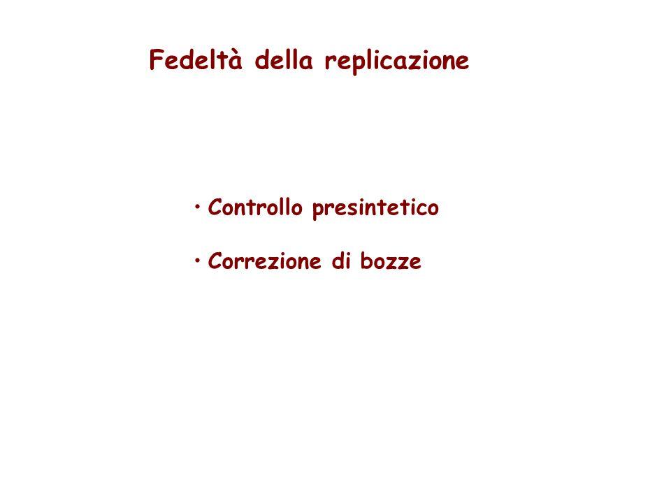 Fedeltà della replicazione