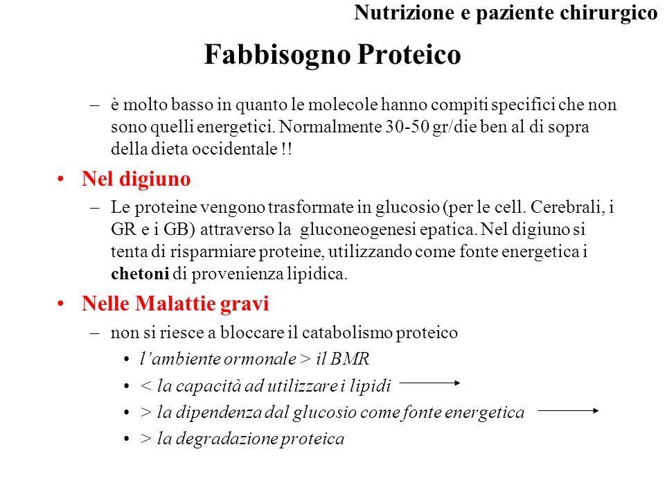Fabbisogno Proteico Nel digiuno Nelle Malattie gravi