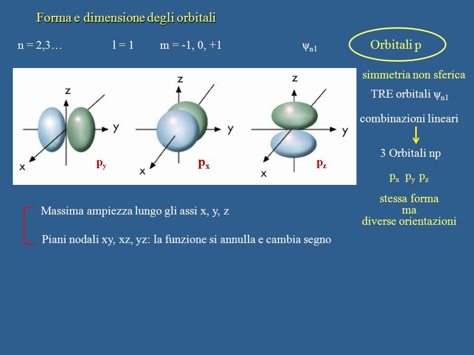 Forma e dimensione degli orbitali