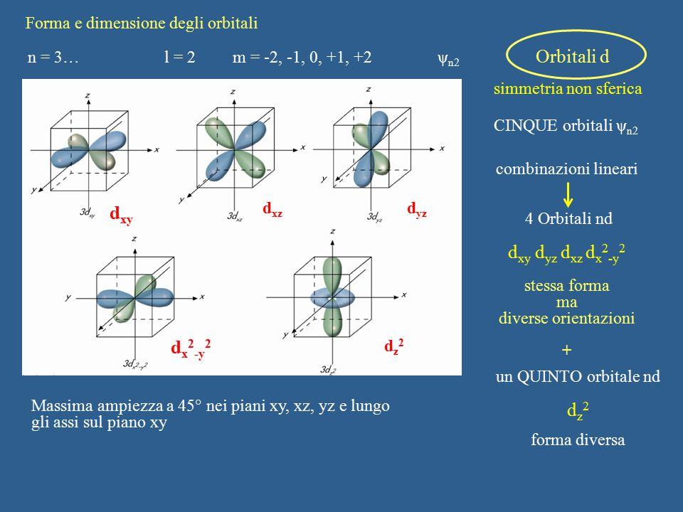 dxy dxy dyz dxz dx2-y2 dx2-y2 dz2 Forma e dimensione degli orbitali