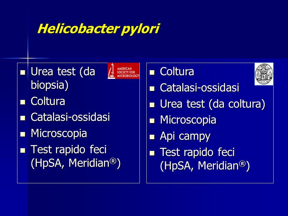 Helicobacter pylori Urea test (da biopsia) Coltura Catalasi-ossidasi