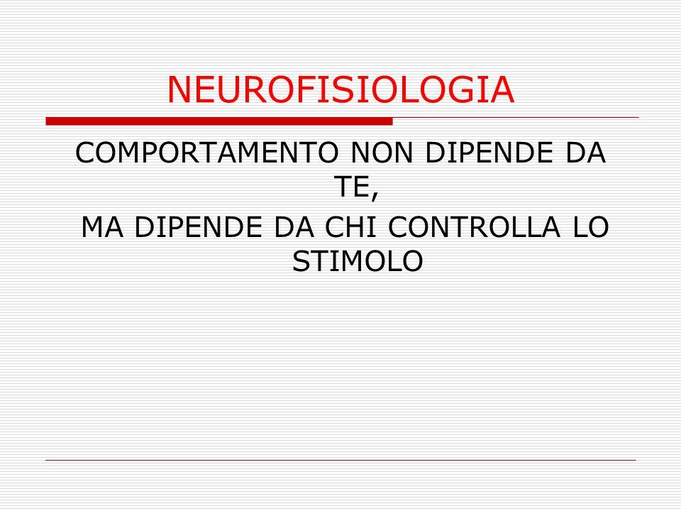NEUROFISIOLOGIA COMPORTAMENTO NON DIPENDE DA TE,