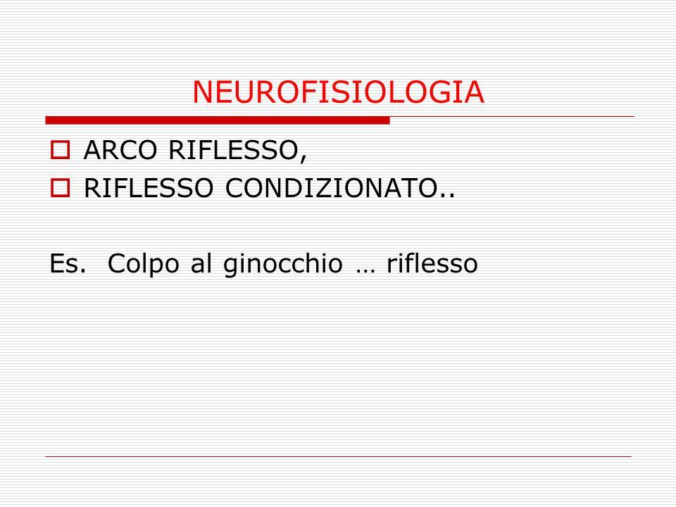 NEUROFISIOLOGIA ARCO RIFLESSO, RIFLESSO CONDIZIONATO..