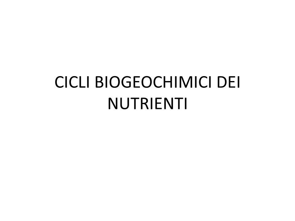 CICLI BIOGEOCHIMICI DEI NUTRIENTI