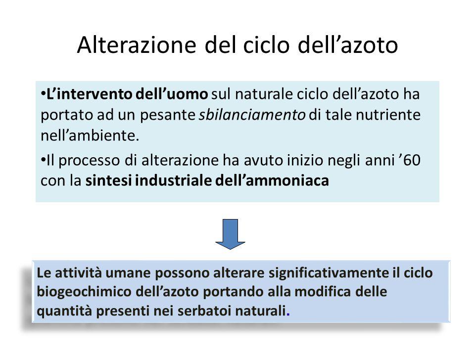 Alterazione del ciclo dell'azoto