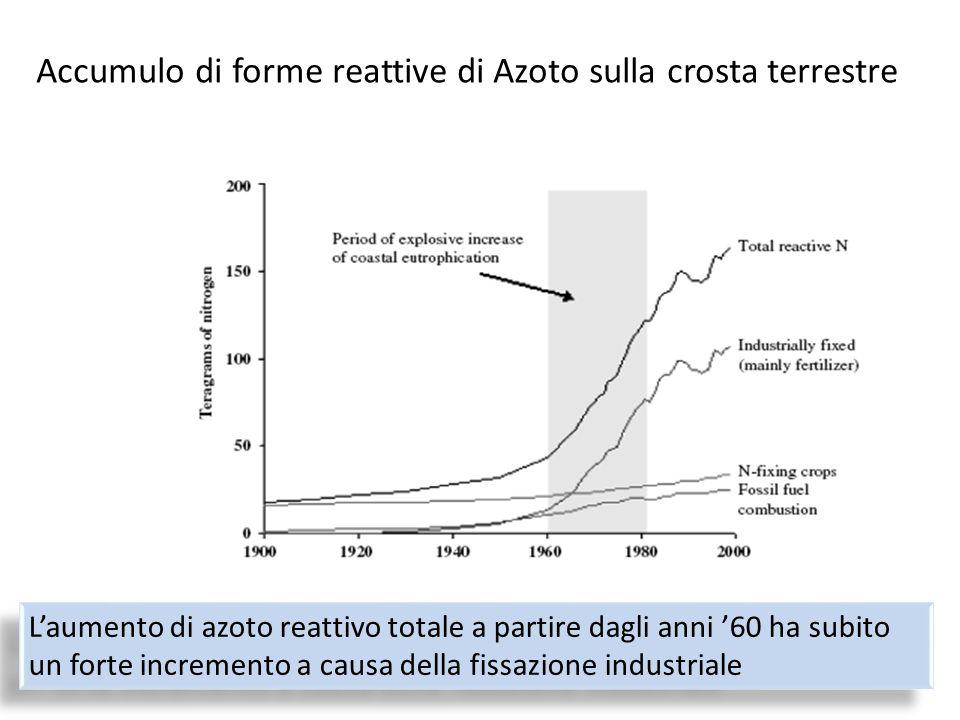 Accumulo di forme reattive di Azoto sulla crosta terrestre