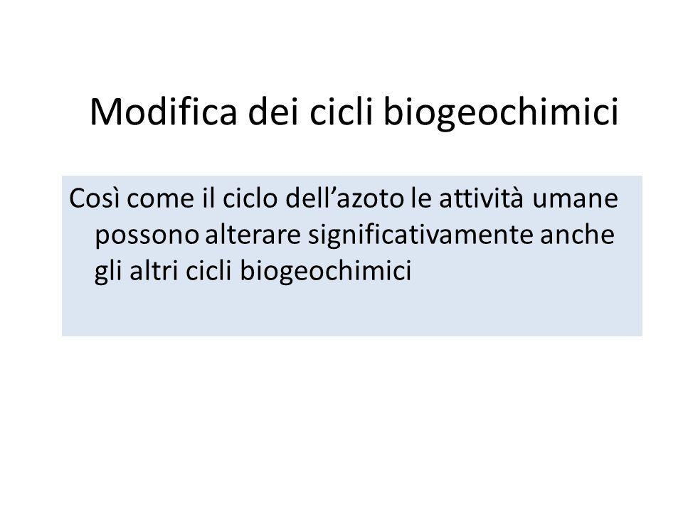Modifica dei cicli biogeochimici