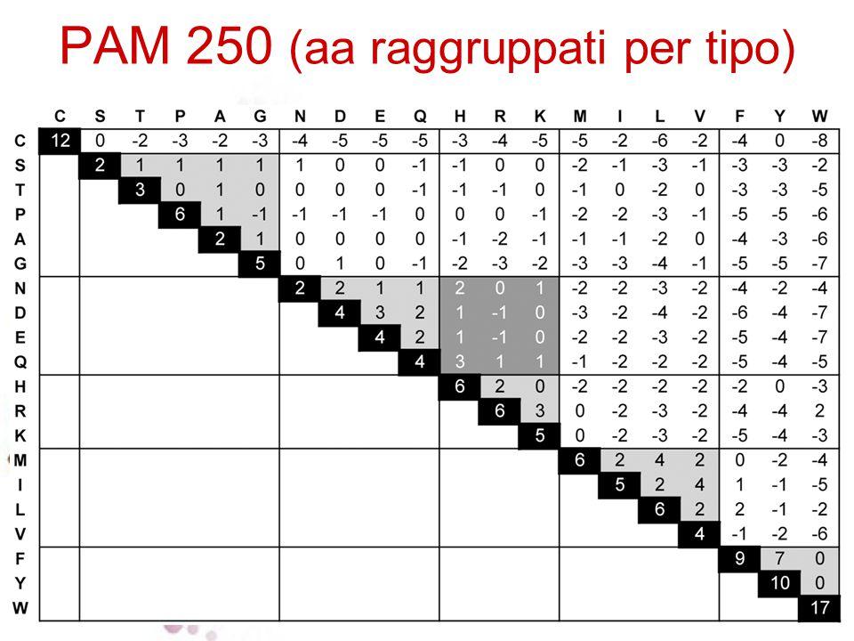 PAM 250 (aa raggruppati per tipo)