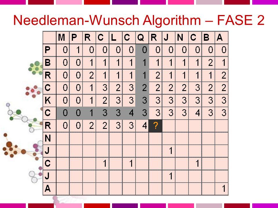 Needleman-Wunsch Algorithm – FASE 2