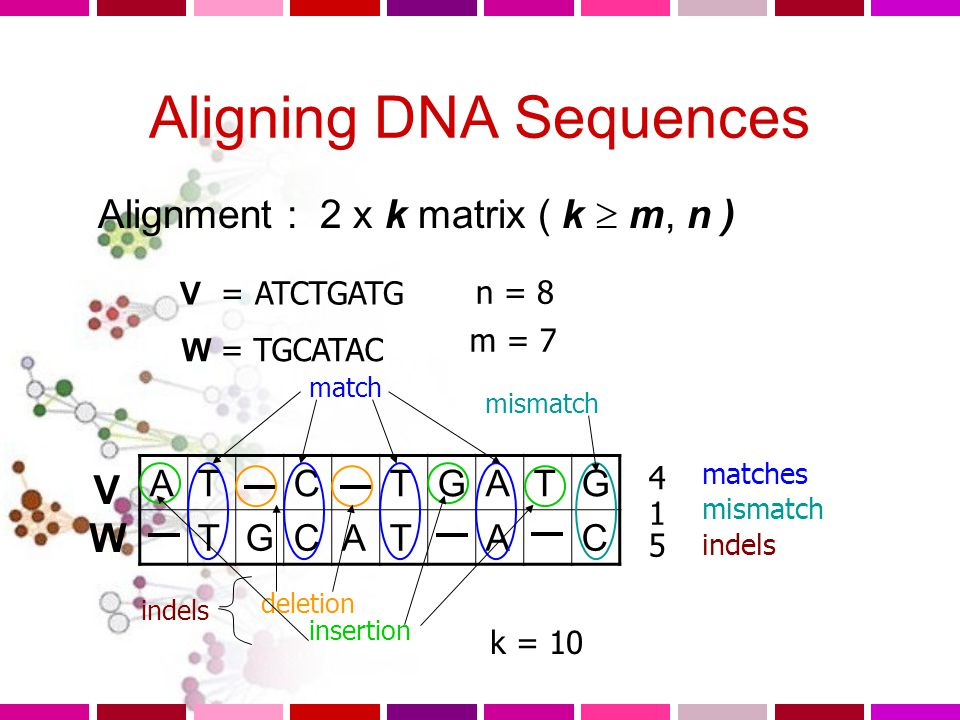 Aligning DNA Sequences
