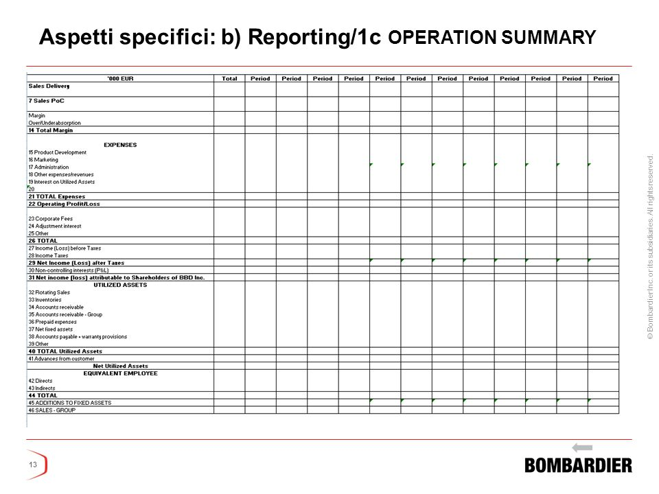 Aspetti specifici: b) Reporting/1c OPERATION SUMMARY