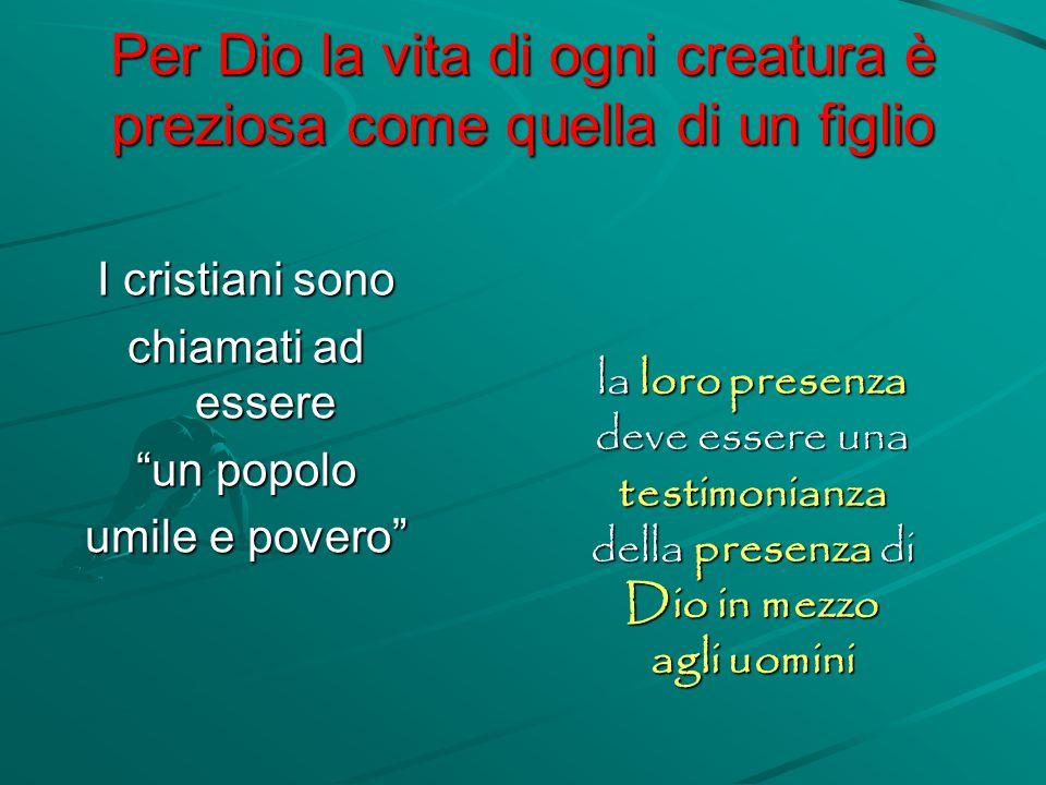 Per Dio la vita di ogni creatura è preziosa come quella di un figlio