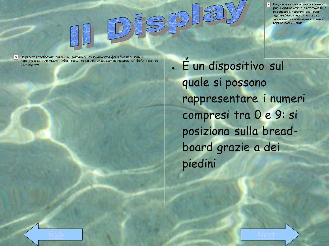 Il Display É un dispositivo sul quale si possono rappresentare i numeri compresi tra 0 e 9: si posiziona sulla bread- board grazie a dei piedini.