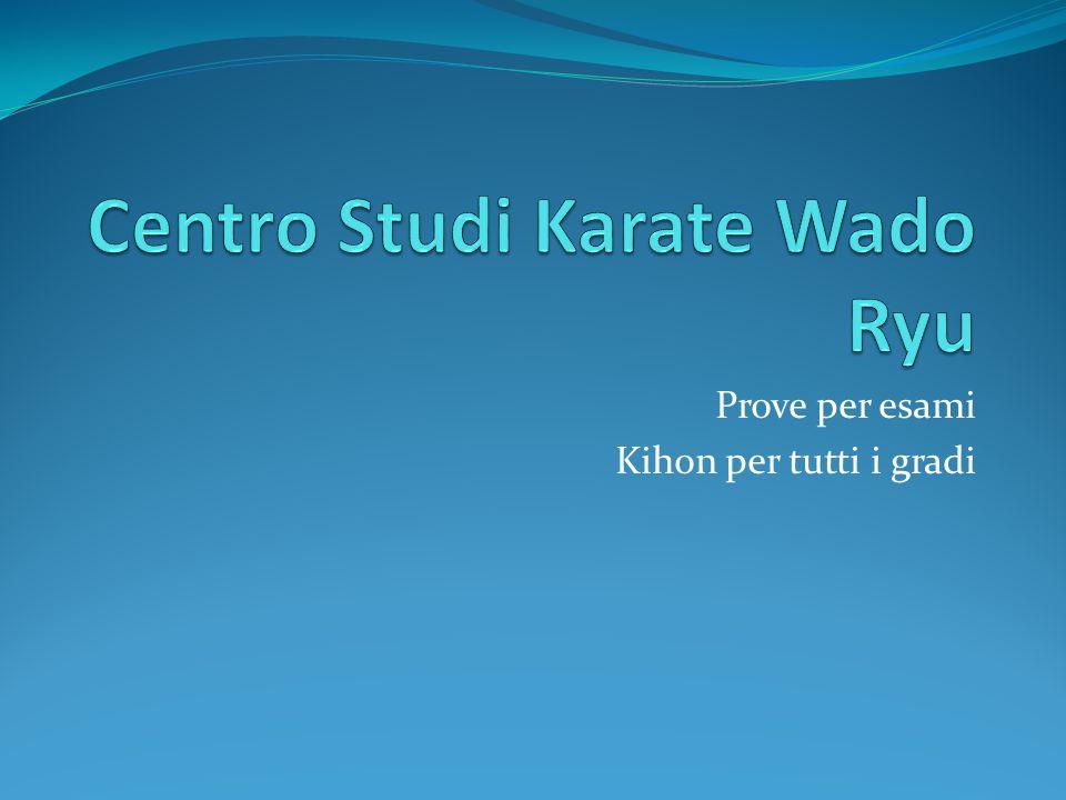 Centro Studi Karate Wado Ryu