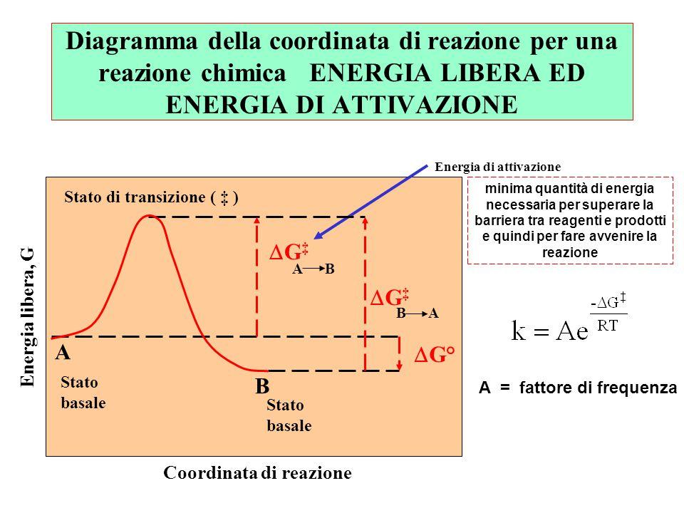 Stato di transizione ( ‡ ) Coordinata di reazione