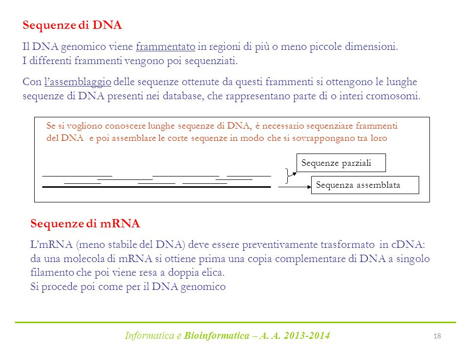 Sequenze di DNA Sequenze di mRNA