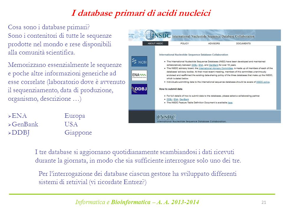 I database primari di acidi nucleici