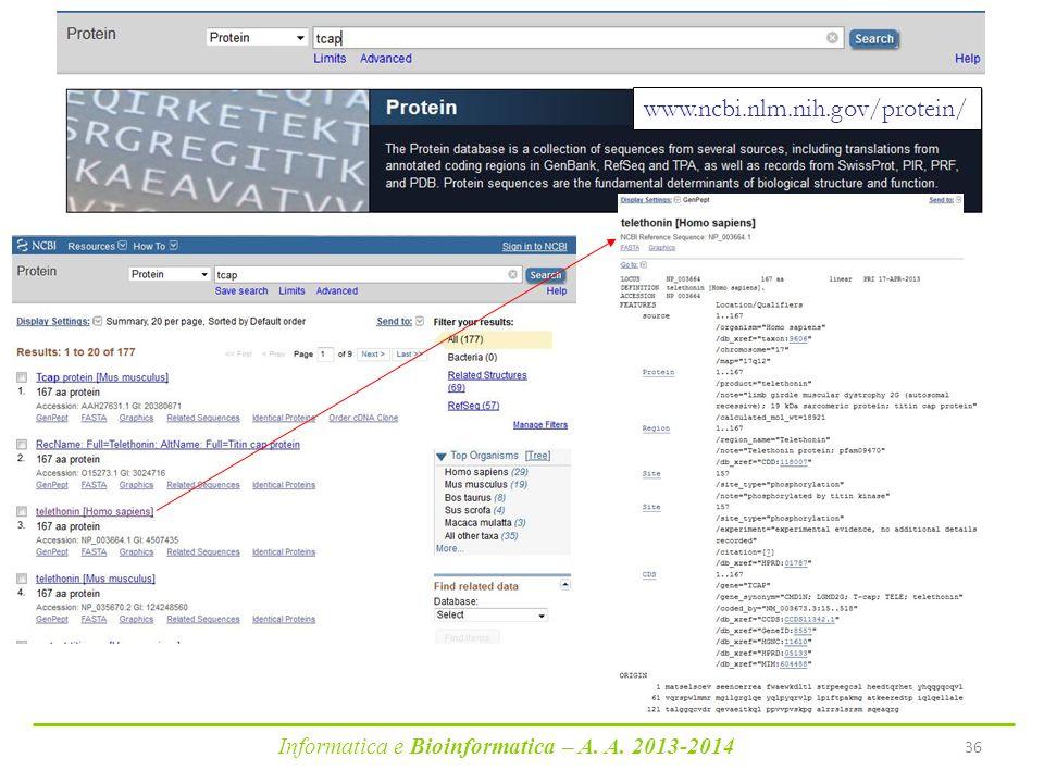 www.ncbi.nlm.nih.gov/protein/ Informatica e Bioinformatica – A. A. 2013-2014