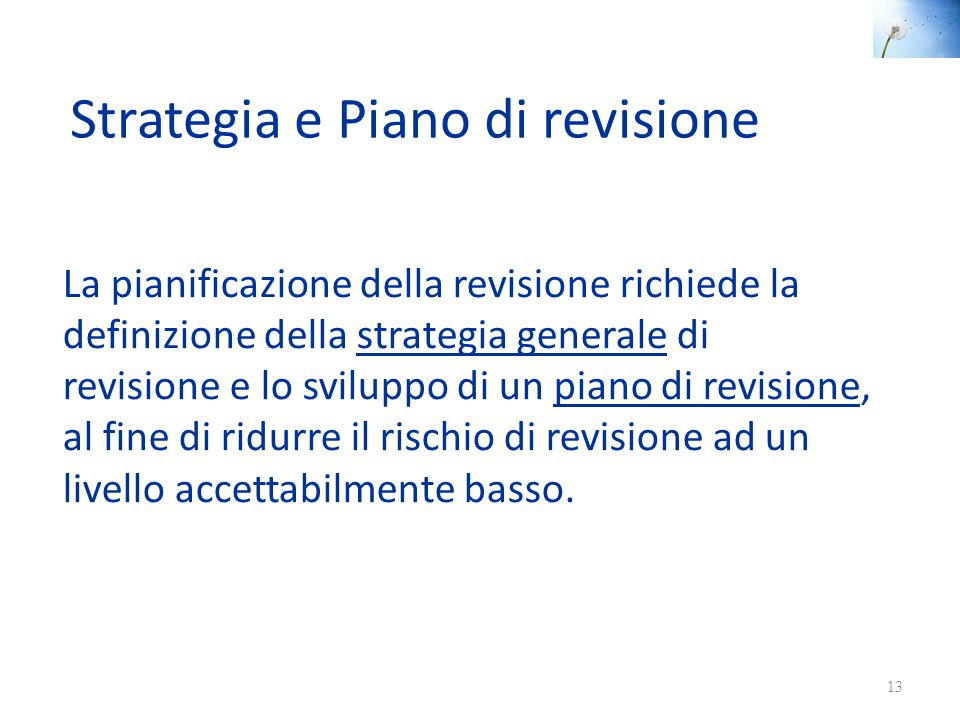 Strategia e Piano di revisione