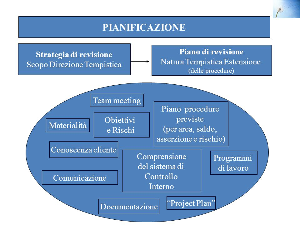 Strategia di revisione
