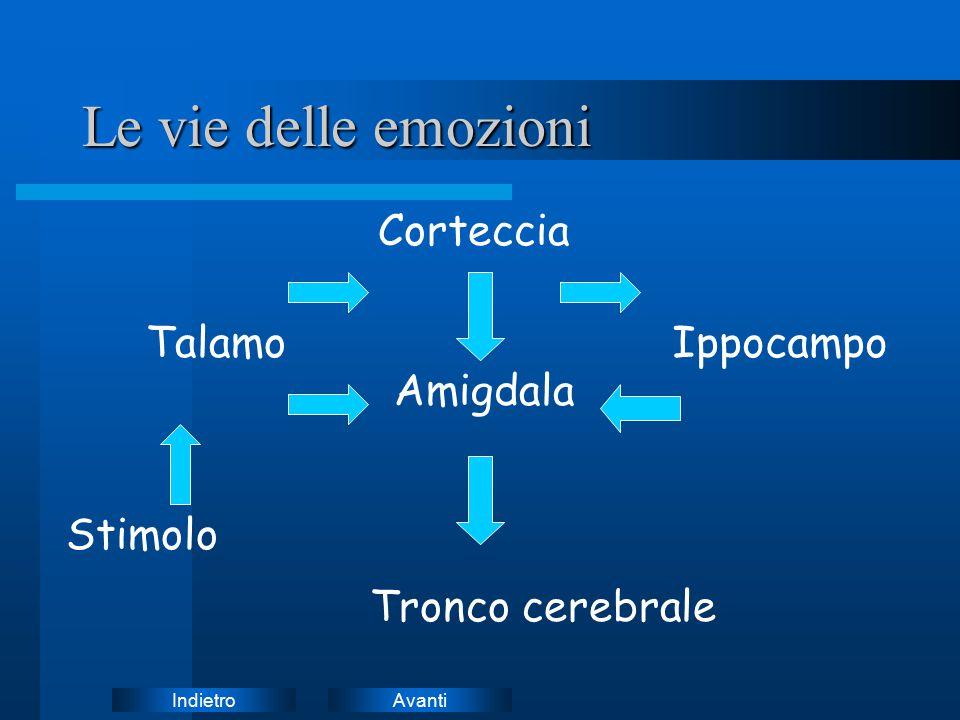 Le vie delle emozioni Corteccia Talamo Ippocampo Amigdala Stimolo