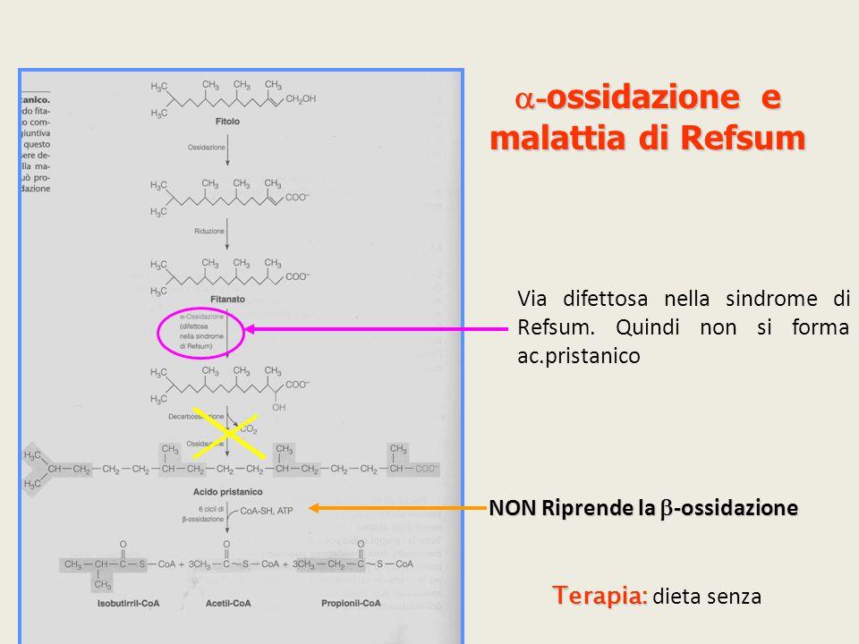a-ossidazione e malattia di Refsum