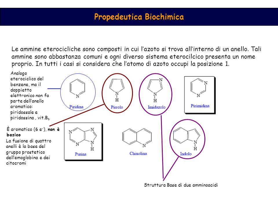 Propedeutica Biochimica
