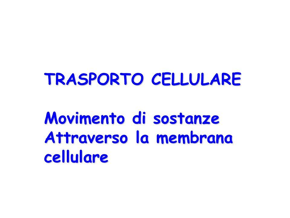 TRASPORTO CELLULARE Movimento di sostanze Attraverso la membrana cellulare