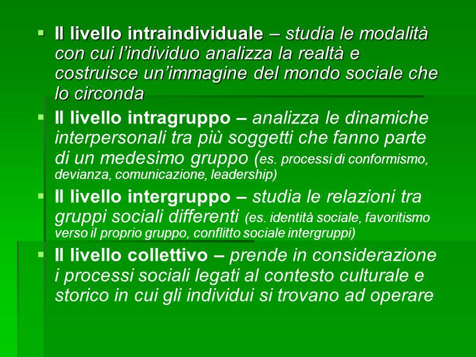 Il livello intraindividuale – studia le modalità con cui l'individuo analizza la realtà e costruisce un'immagine del mondo sociale che lo circonda