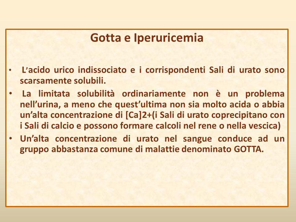 Gotta e Iperuricemia L'acido urico indissociato e i corrispondenti Sali di urato sono scarsamente solubili.