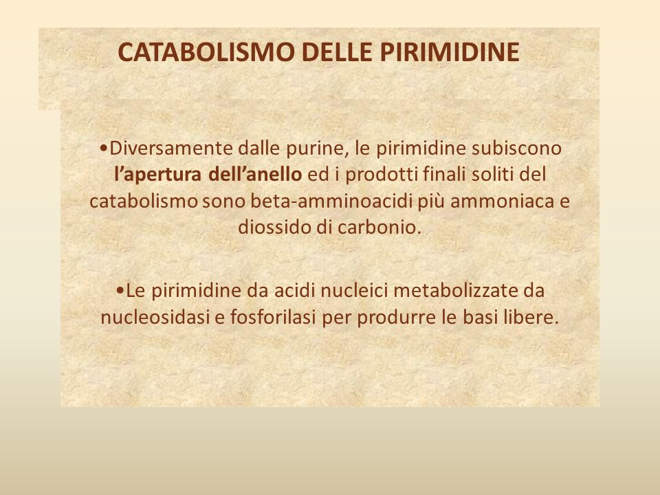 CATABOLISMO DELLE PIRIMIDINE