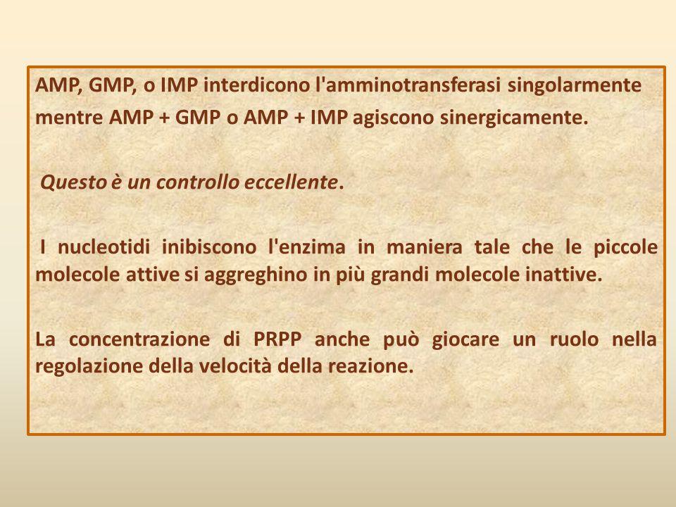 AMP, GMP, o IMP interdicono l amminotransferasi singolarmente