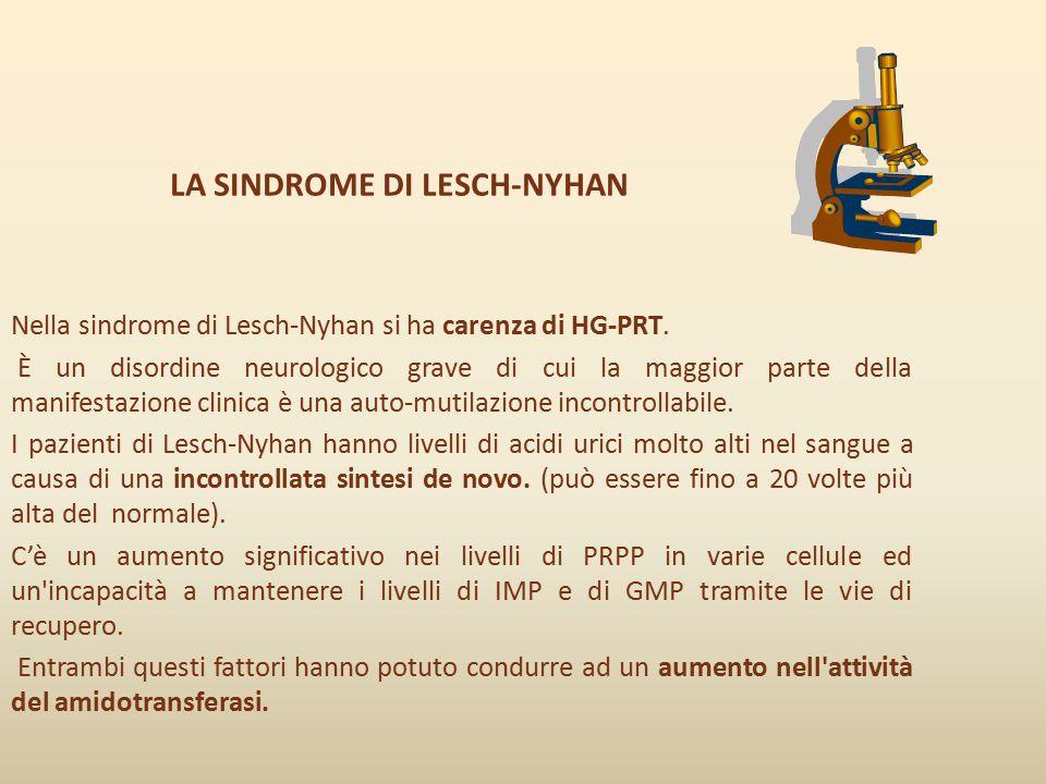 LA SINDROME DI LESCH-NYHAN