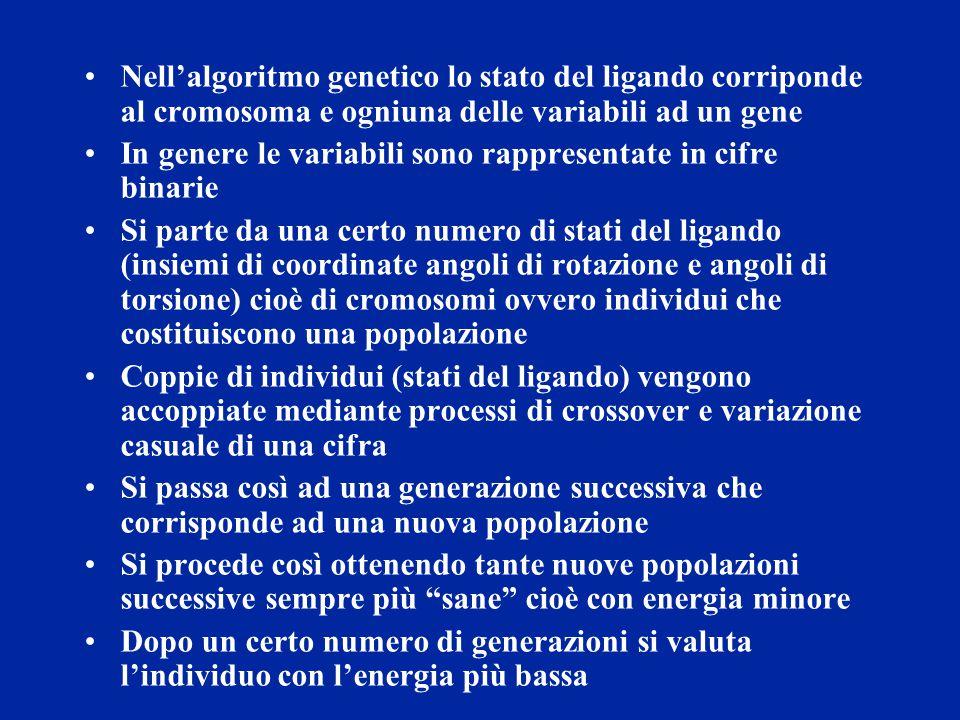 Nell'algoritmo genetico lo stato del ligando corriponde al cromosoma e ogniuna delle variabili ad un gene