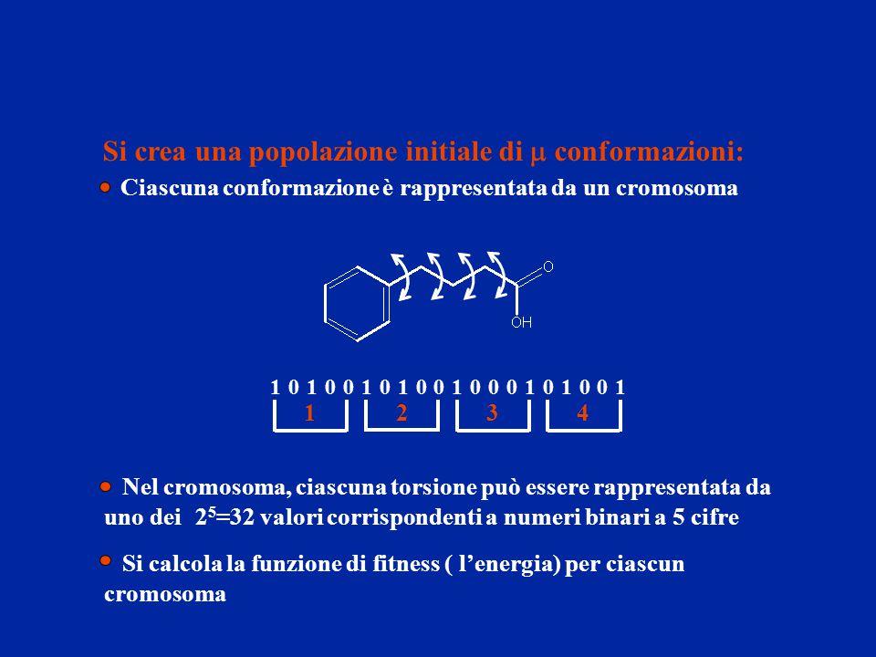 Si crea una popolazione initiale di m conformazioni:
