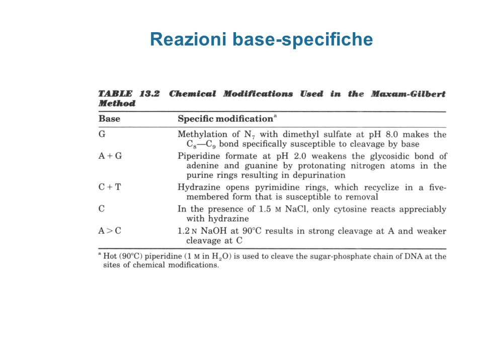 Reazioni base-specifiche