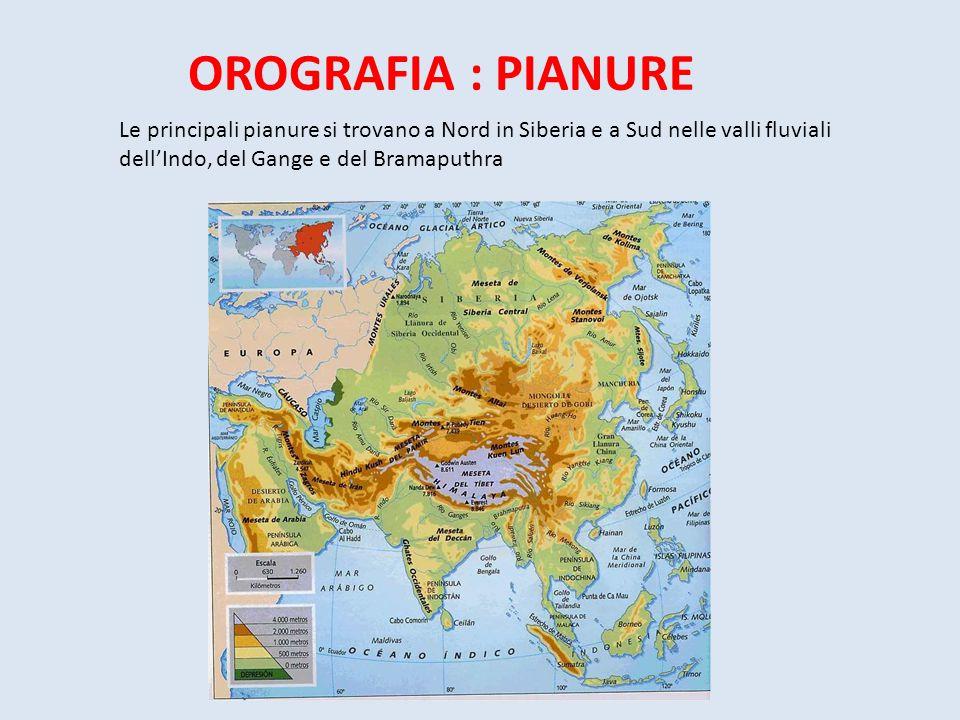 OROGRAFIA : PIANURE Le principali pianure si trovano a Nord in Siberia e a Sud nelle valli fluviali dell'Indo, del Gange e del Bramaputhra.
