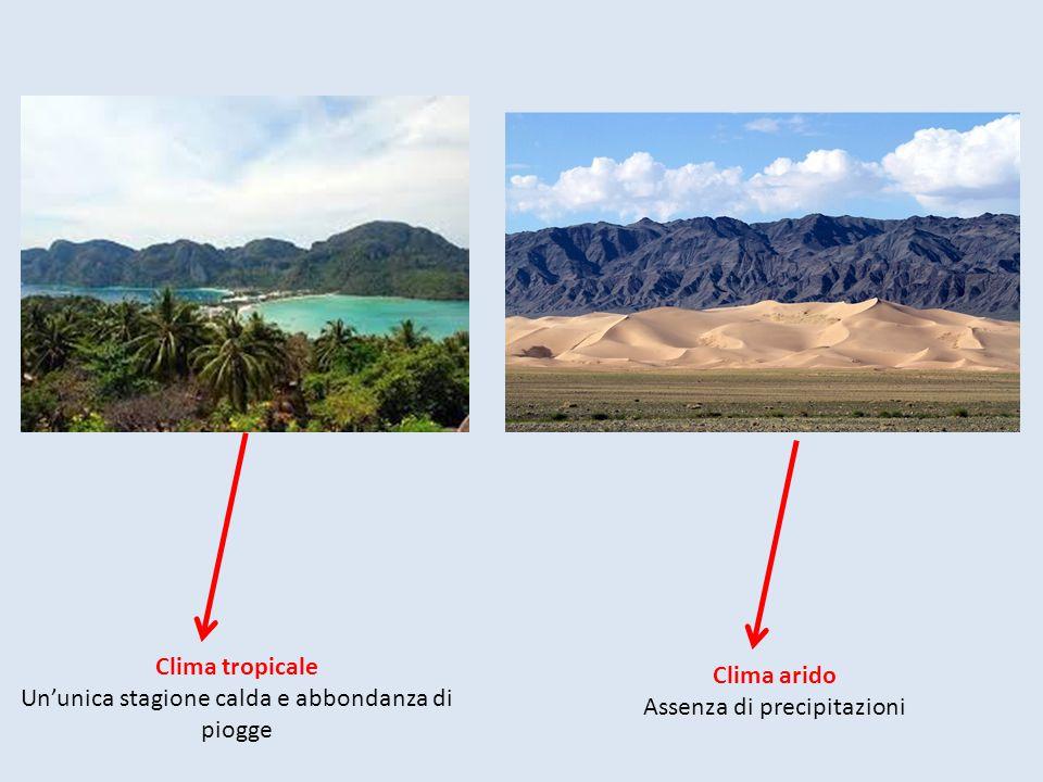 Clima tropicale Clima arido