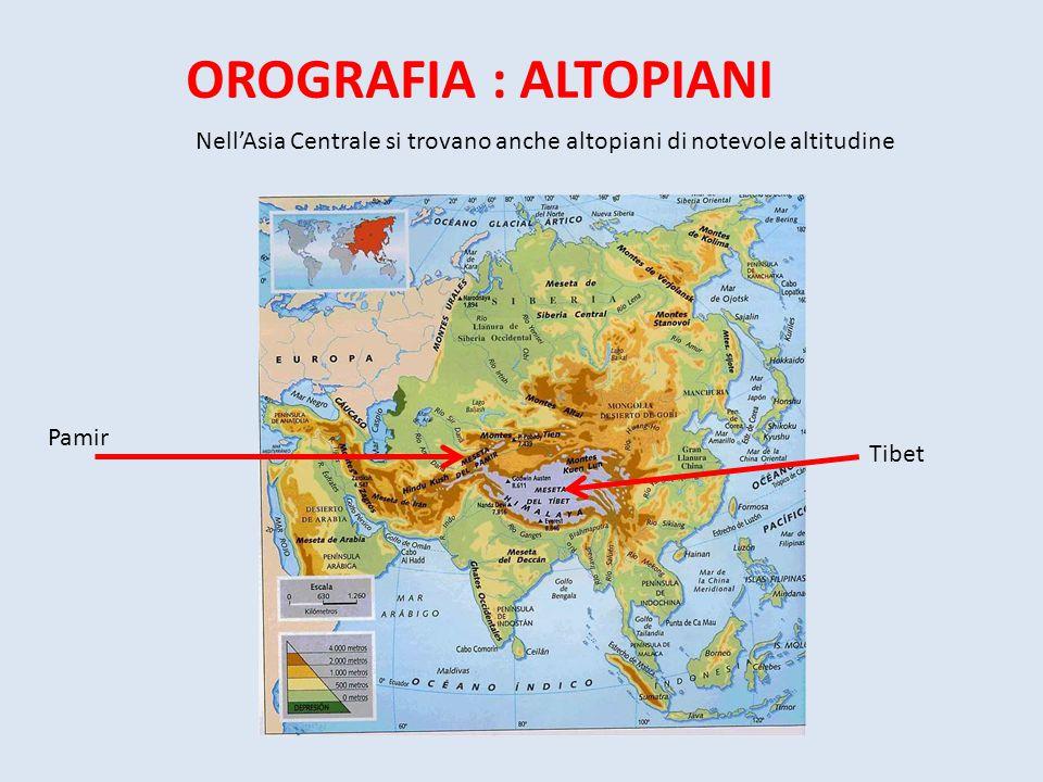 OROGRAFIA : ALTOPIANI Nell'Asia Centrale si trovano anche altopiani di notevole altitudine. Pamir.