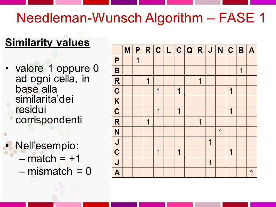 Needleman-Wunsch Algorithm – FASE 1