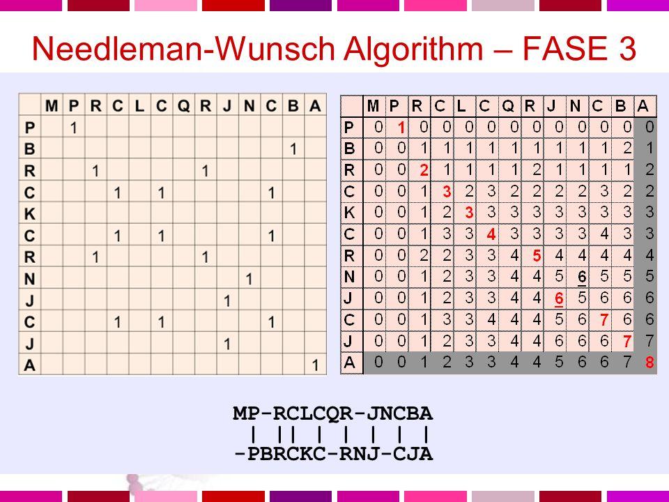 Needleman-Wunsch Algorithm – FASE 3