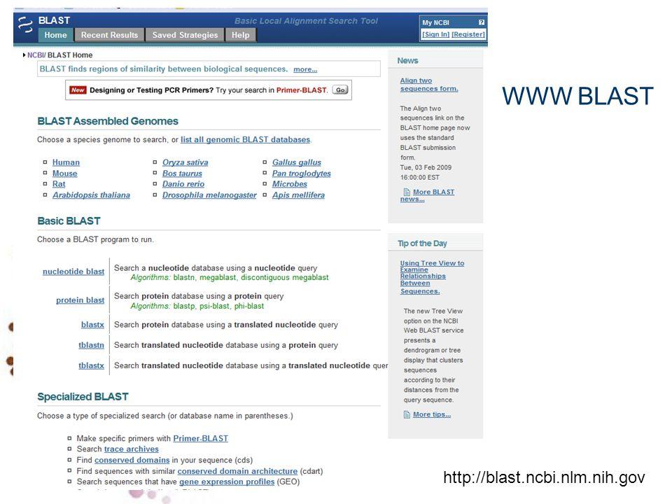 WWW BLAST http://blast.ncbi.nlm.nih.gov