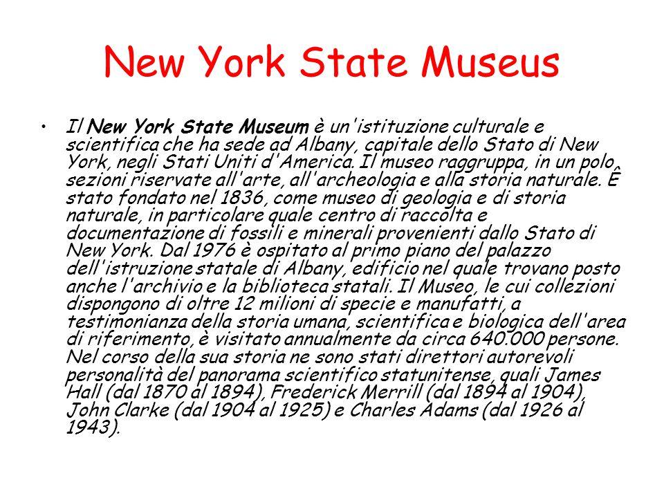 New York State Museus