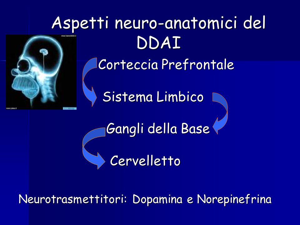 Aspetti neuro-anatomici del DDAI